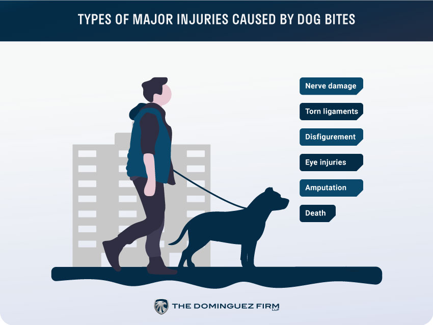 Types of Major Injuries Caused By Dog Bites