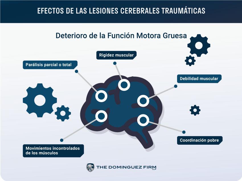 Efectos de Lesiones Cerebrales Traumaticas Funcion Motora Gruesa
